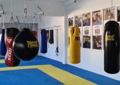 Boxeo prenovljena dvorana